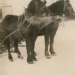ohn with horses, Maude & Trixie preparing to go ice fishing on lake